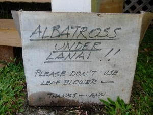 Sign behind Ann's house